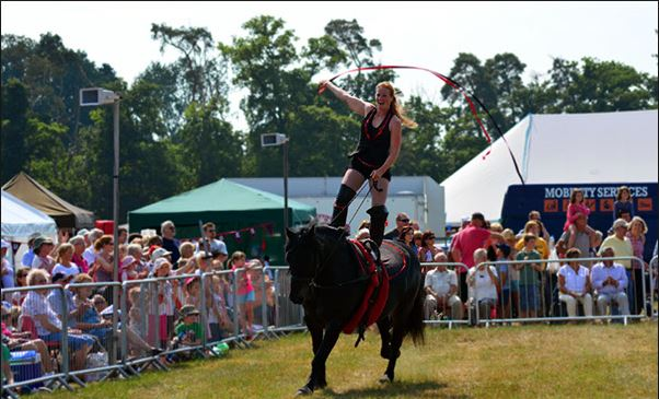 Swallowfield Show - Events 9