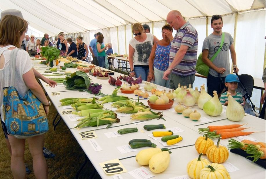 Swallowfield Show - Horticultural 6
