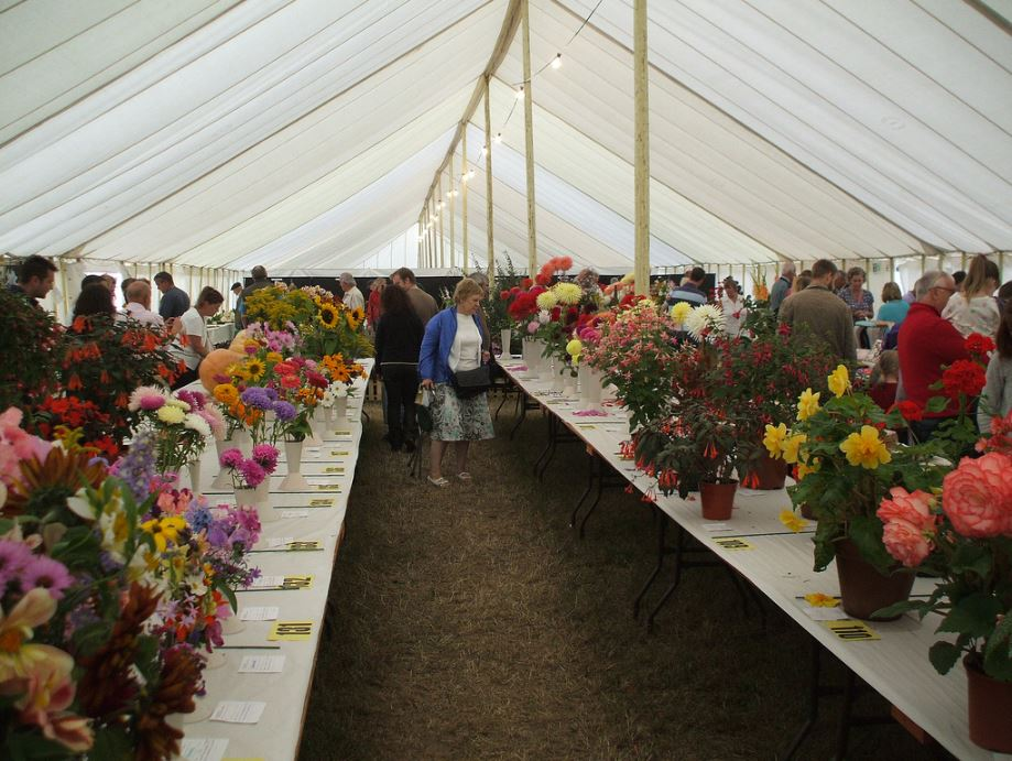 Swallowfield Show - Horticultural Main Tent