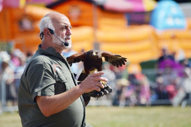 Ray Prior Falconry