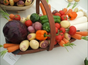 Swallowfield Show - Horticultural 4