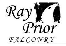 ray-prior