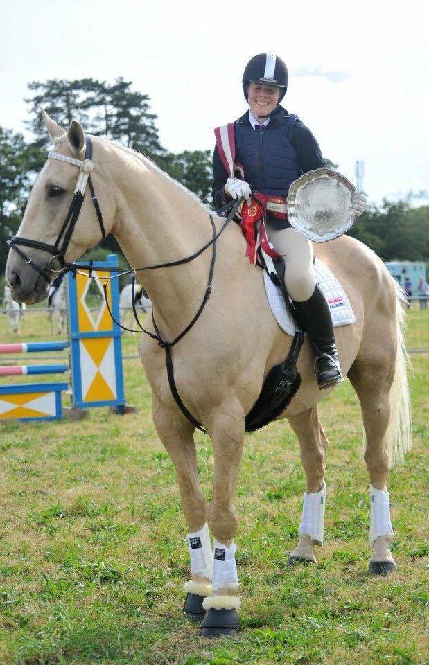 Horse Jumping Champion