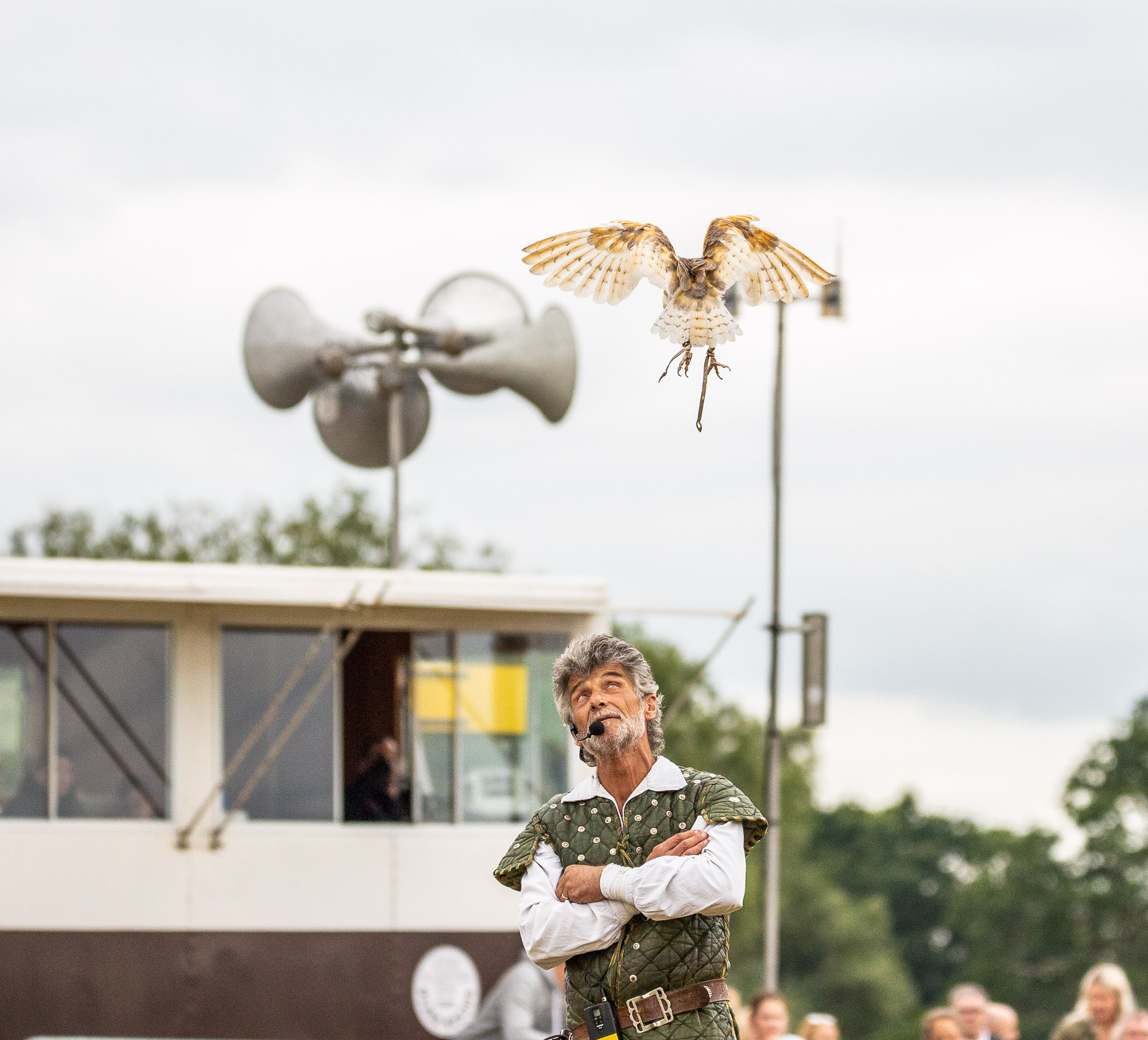 Falconry-Display-0102