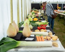 Horticultural-and-Cooking-Tent-0014